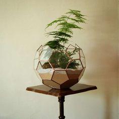 Ces mini-terrariums aux parois géométriques en verres sont créés par Alexander McLachlin du Nightshade Studio.