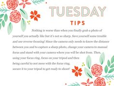 It's a Photogenic Photographer Tuesday Tips kind of day today!  http://www.everythingbloom.com/tuesday-tips-160