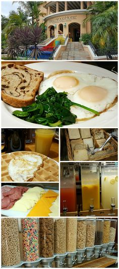 When having a staycation in Los Angeles, I was happy to try the complimentary Hollywood Hotel breakfast. Hotel Airbnb, Hotel Breakfast, Hollywood Hotel, California Travel, Southern California, Staycation, Wanderlust Travel, Foodie Travel, Hotels And Resorts