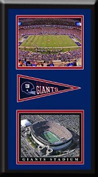 New York Giant MetLife Aerial View Large Stadium Poster With Team Logo