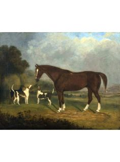 Horse and Hounds, British School, c 1850