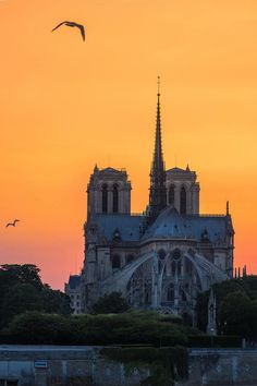 Notre-Dame de Paris at sunset.
