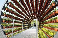 Urban Farming. Very cool circular structure holds hundreds of terra cotta pots. Great small space gardening inspiration.