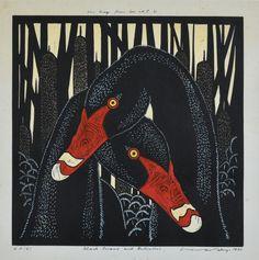Leslie V Van Der Sluys- Black swans Australian Art, Art For Art Sake, Aboriginal Art, Wildlife Art, Print Artist, Bird Art, Rock Art, Art Prints, Lino Prints