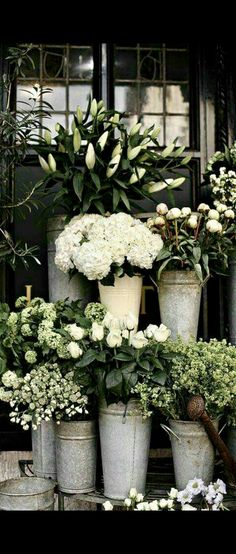 1668 best hot house images on pinterest flowers gardening and this ivy house breadandolives london flower shop mightylinksfo