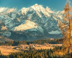 Belianske Tatry, Slovakia, foto: J. Pitonak Germany Poland, Beautiful Places In The World, Bratislava, Capital City, Places To See, Travel Inspiration, Europe, Mountains, Sabbatical