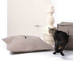 Cat's in Style : Get a designer cat litter for... 329$ US! At this price, I think you should try to DIY.