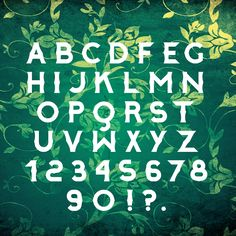 Albert Typeface