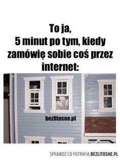 Polish Memes, Im Depressed, Good Mood, Best Memes, Nice View, The Funny, Haha, Hilarious, Humor