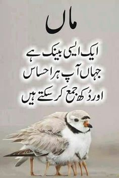 Maa Such Kaha Kerti Thi Maa Quotes in Urdu Images - Urdu Diary Club My Dad Quotes, Mothers Love Quotes, Fathers Day Quotes, Daughter Quotes, Life Quotes, Father Daughter, Islamic Quotes, Islamic Messages, Islamic Inspirational Quotes