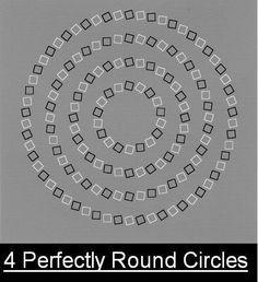 optical illusion - Perfectly round circles. I cerchi sono perfettamente circolari ma così non sembra.
