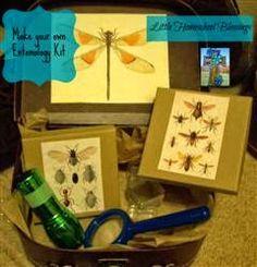Little Homeschool Blessings: Making the Entomology Kit: Great Homemade Gift Idea #homemadekits #entomologystudy #bugs