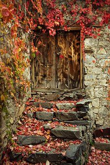 Image Nature, Nature Photos, Old Doors, Windows And Doors, Free Pictures, Free Images, Behind The Green Door, Image Fruit, Image Halloween