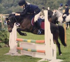 First time jumping 1.00 course only 10