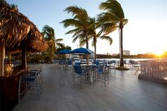 Hotels, Travel, Restaurants & Things To Do in Florida Hollywood Beach Hotels, In Hollywood, Florida Hotels, Orlando Florida, Sunrise Florida, Things To Do, Patio, Places, Outdoor Decor
