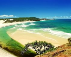 Fraser Island, Australia   - Explore the World with Travel Nerd Nici, one Country at a Time. http://TravelNerdNici.com