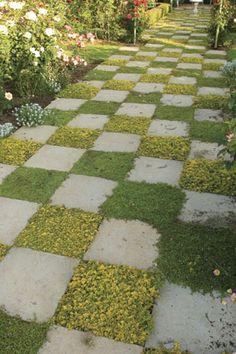 gebruik geurende planten tussen je bestrating