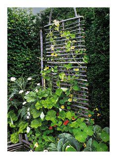 Inspirations, Idées & Suggestions, JesuisauJardin.fr, Atelier de paysage Paris, Stéphane Vimond Créateur de jardins en ville #DIYgarden #bobo #jardin #paysage #jardinage #gardening #doityourself #creativegarden #terrasse #terrace