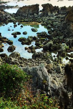 Playa de Toró. Llanes, Concejo de Llanes. Principado de Asturias. Spain.   {By Valentin Enrique].