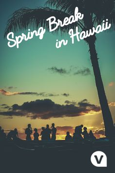Ready to plan your #SpringBreak? Find amazing tours & things to do in Hawaii!