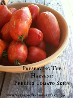 Easily peel tomatoes for processing! And a few great recipes to try...