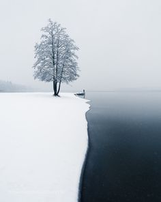 First Snow by MikkoLagerstedt