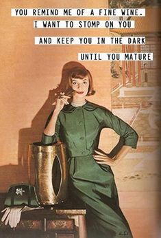 21 Funny Sarcastic Housewife Memes ~ Humor for the Ages 5 21 Funny Sarcastic Housewife M Retro Humor, Vintage Humor, Retro Funny, Vintage Quotes, Funny Vintage, Memes Humor, Funny Memes, Sarcastic Memes, Hilarious Quotes