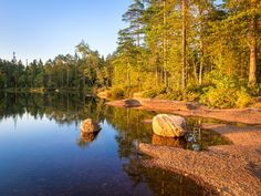 Current weather and hiking conditions in Nuuksio National Park in Vihti and Espoo, Finland. Updated every week with new photos from the national park. Finland, National Parks, Hiking, Weather, Peace, River, Landscape, Nature, Outdoor
