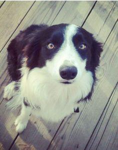 My baby has beautiful eyes ♥♥♥♥♥