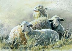 Sheep on a path - 'Twins, cold winter morning' - by Barbara Philip