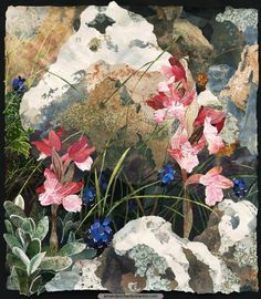 There are many enchanting orchids growing among the limestone boulders of Monte Sacro. None are more beautiful than the Butterfly Orchids with their outspread skirts. Many other plants also grow on the mountainside including the deep blue Grape Hyacinth I have added to this collage.