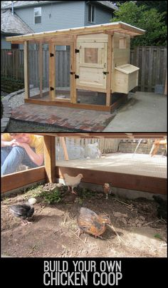 Chicken Coop Build your chooks a home with this beautiful DIY chicken coop!Build your chooks a home with this beautiful DIY chicken coop! Portable Chicken Coop, Best Chicken Coop, Backyard Chicken Coops, Chicken Coop Plans, Chicken Feed, Building A Chicken Coop, Chickens Backyard, Healthy Chicken, Chicken Tractors