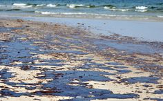 Best Bp Oil Spill Images  Bp Oil Oil Spill Environment The Gulf Of Mexico Oil Spill Essay Read This Essay On Bp  Gulf Of Mexico Oil  Spill Come Browse Our Large Digital Warehouse Of Free Sample Essays What Is A Thesis Statement In A Essay also Thesis Statement For Friendship Essay  Jane Eyre Essay Thesis