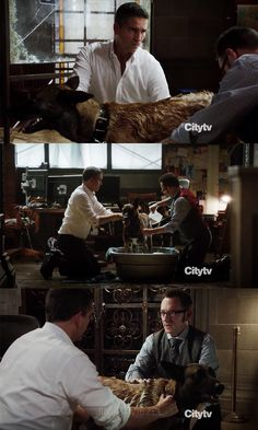Reese and Finch gives Bear (dog) a bath. very funny. Ncis Characters, Harold Finch, John Reese, Jim Caviezel, Person Of Interest, Love Bear, The Fault In Our Stars, Me Tv, Nerd Geek