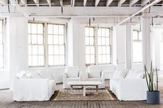 Sofas and Lounges | MCM HOUSE