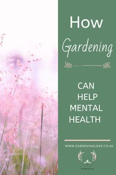 Learn how gardening can help your mental health. Simple effective ways that gardening can promote health and wellbeing. Boost your mental health by connecting with nature in the garden, helping to raise serotonin levels, raises vitamin D absorption, giving a sense of purpose whilst promoting mindfulness. #Gardening #MentalHealth #Wellbeing #ecoTherapy #Outdoors #Nature #Serotonin #Mindfulness