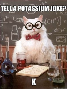 Image detail for -tell a potassium joke k - Chemistry Cat