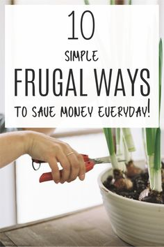 Frugal living is a way of life and a great way to save money. These frugal living tips will show you how easy it is to save money everyday and watch the small changes add up to big savings. Start your frugal life today and save more money! #savingstips #tipstosave