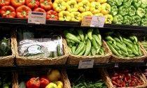 Vegan Diets – To Keep Elderly Fit and Healthy