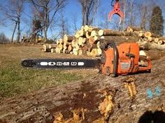Timber Companies, Forest Resources, Logs, Washington State, Timberland, Outdoor Power Equipment, Old Things, Timberlands, Garden Tools