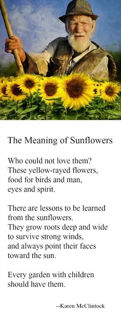 Poem: The Meaning of Sunflowers -- by Karen McClintock. #GardenQuotes