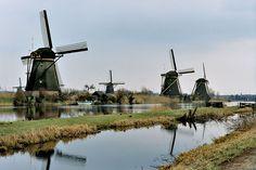 UNESCO world heritage, Beemster Polder (reclaimed land), near Middenbeemster, North Holland (NL)