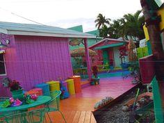 Art Galleries in Matlacha, Florida