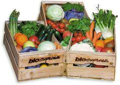 frutta e verdura bio a casa