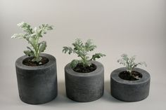 Handcrafted in Pennsylvania by Rough Fusion. Round concrete planter containers for indoor or outdoor use. A simple shape, grey color, and regular concrete texture. Great for succulents and small plant