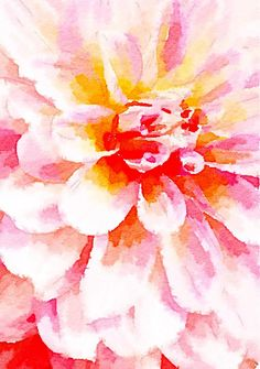 WATERCOLOR, #wc412, watercolor filter,DAHLIA, photographic image with filter, watercolour,summer, flower
