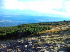 Beskidy - BPN - Babia Hora #Babia-Góra #Diablak #Beskidy #BPN #Babiogórski-Park-Narodowy #góry #szlaki-górskie #górskie-wędrówki #turystyka-górska #Poland #Polska #małopolska #powiat-suski #przyroda #Beskid #Zawoja #mountains #Polska #Poland #Beskid-Żywiecki #Karpaty