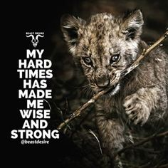 I dont know it's for me or not but I love the baby lion Nospellingskindly Inspirational Quotes About Success, Positive Quotes, Success Quotes, Motivational Quotes, Rich Quotes, True Quotes, Qoutes, Desire Quotes, Swag Quotes
