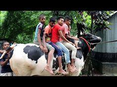 মেসির সঙ্গে এবারের ঈদের মাঠ কাপাবে গোপালগঞ্জের শের পাগলা