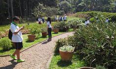 Jardim dos Sentidos – É um espaço que possui coleção de plantas aromáticas, onde o visitante pode tocar as plantas e sentir seus aromas e texturas. Esse espaço está adaptado para atender deficientes visuais e cadeirantes.